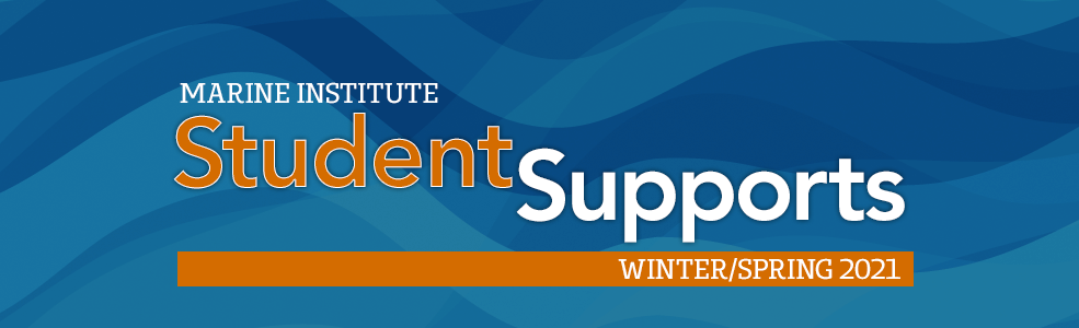 Student Supports Winter Spring 2021 - banner