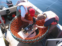 Trawl-mounted camera
